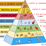 http://a--table.blogspot.fr/2010/04/pyramides-alimentaires.html