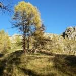 Copie de photos montagne oct 2014 102