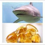 requin_foie_huile_ps-1