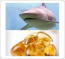 Cancer et huile de foie de requin