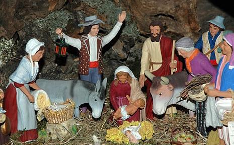 Faire germer du blé, une tradition de Noël en Provence !