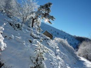photos-decembre