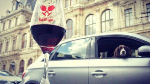 Visiter le salon des vins naturels à Lyon: un acte écologique !
