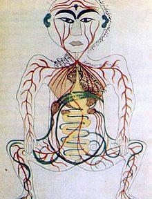 Dépressions, schizophénie, troubles neuropsychiques…: signes d'intoxication intestinale chronique