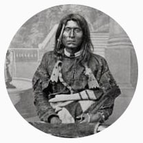 Le noisetier, l'incroyable panacée des Amerindiens !