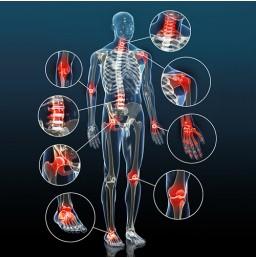 Comment l'harpagophytum peut calmer l'inflammation ?