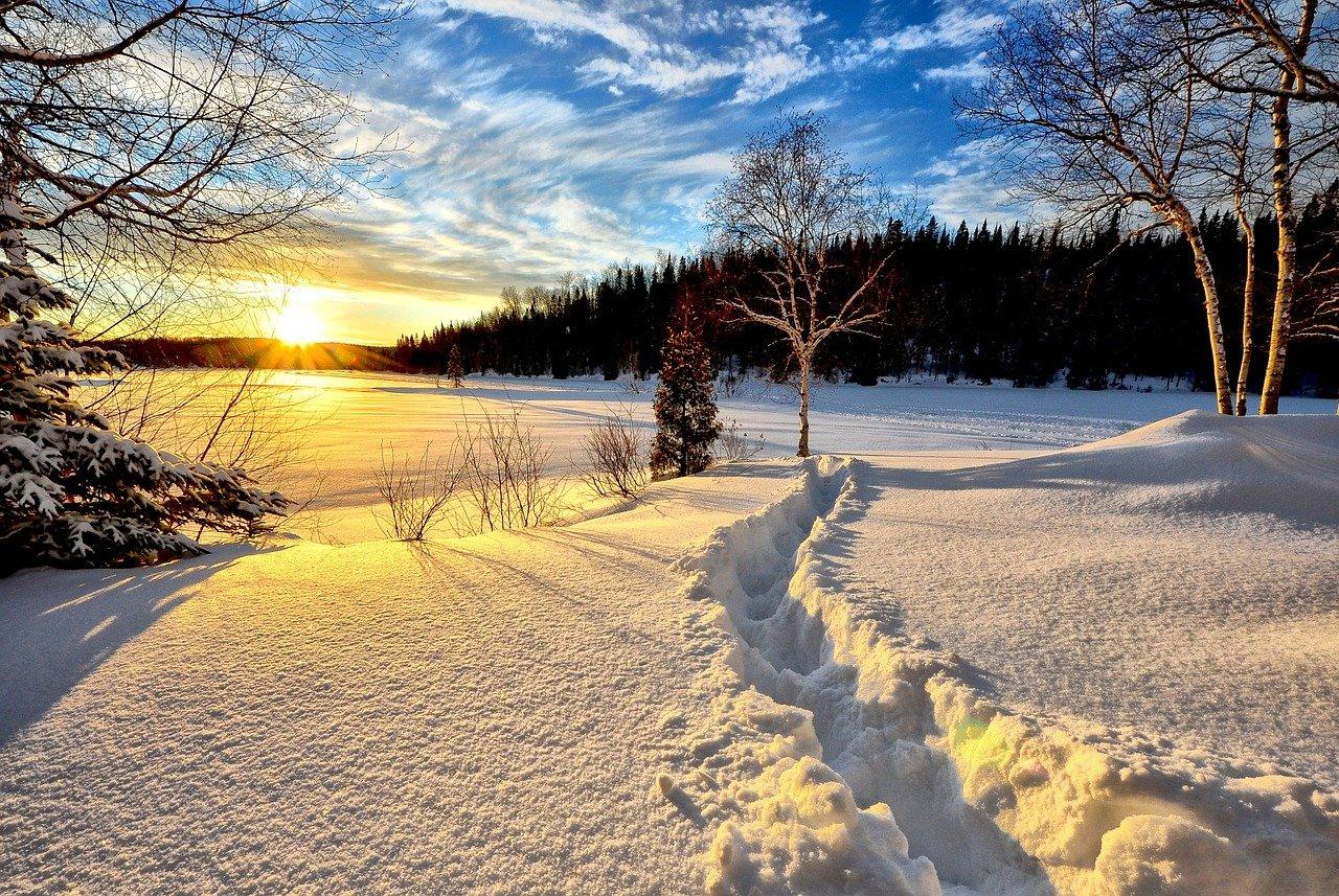 Comment renforcer l'organisme en hiver ?