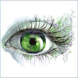 Les 7 meilleurs nutriments pour la santé des yeux
