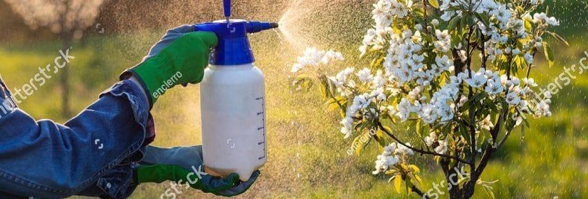 Le crime des pesticides est parfait: le scandale est là !